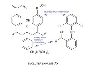 Chemical structure of  anion exchange phase EVOLUTE EXPRESS AX