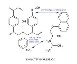 Chemical structure of cation exchange phase EVOLUTE EXPRESS CX