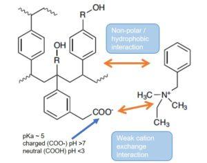 EVOLUTE EXPRESS WCX mixed mode weak cation exchange sorbent