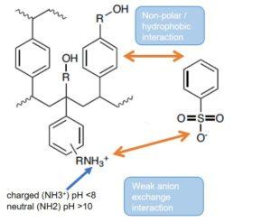 EVOLUTE EXPRESS WAX mixed mode weak anion exchange sorbent